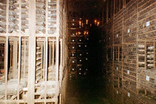 Cellar of Mouton Rothschild